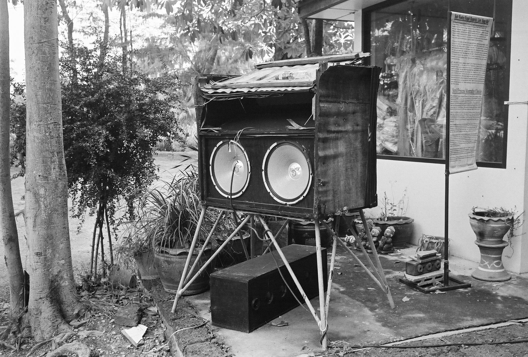 lonely radio : buzz